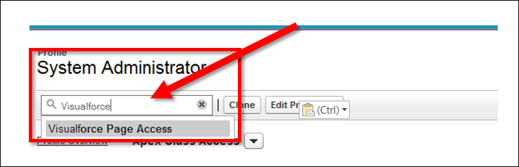 Selecting Visualforce Page Access from the Find Settings box